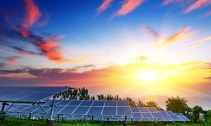 """Newsday Features HIA-LI's Solar Initiative; """"Long Island Is Where We Unite to Build a Sustainable Future,"""" Says Campolo"""