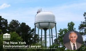 Eisenbud Featured in The New York Environmental Lawyer, 2021 Vol. 41, No. 1